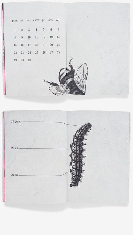 http://okumile.pl/files/gimgs/29_pan-kalendarz10.jpg